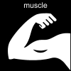 muscle Pictogram