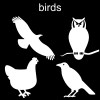 birds Pictogram