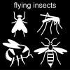 flying insects Pictogram