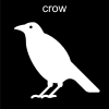 crow Pictogram