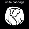 white cabbage Pictogram