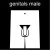 genitals male Pictogram